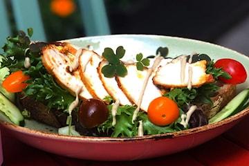 Frodig salat eller kyllingsalat inkl. brownies og kaffe hos Frodig Kafe