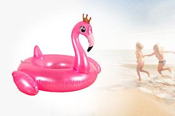 Flamingo badering