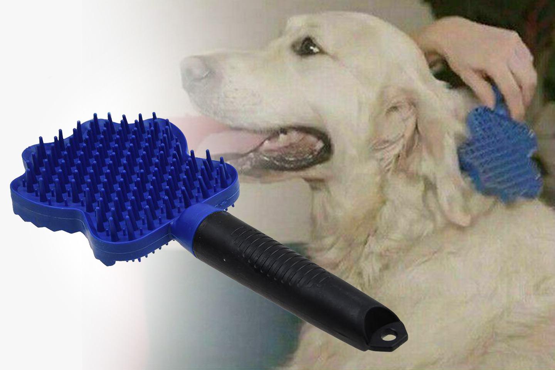 Borste för husdjur (1 av 4)