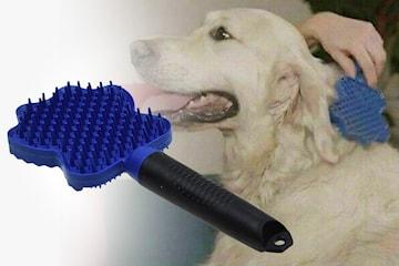 Børste til kjæledyr