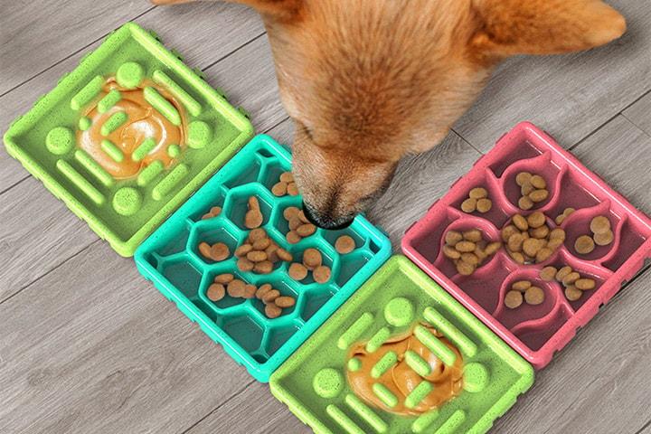 Äta-sakta-matskål för hund 4 delar