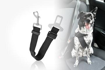 Justerbart bilbelte til hund