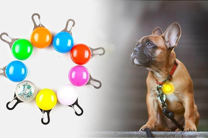LED-lampa för hund 2-pack