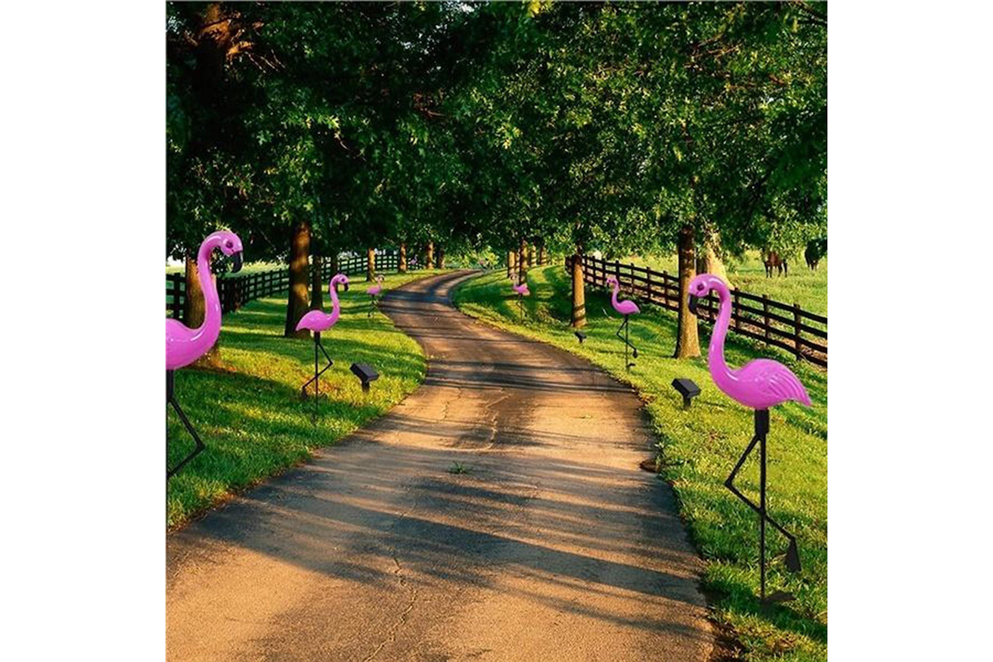 Flamingolys til hagen