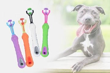 Tandborste för husdjur, 2-pack