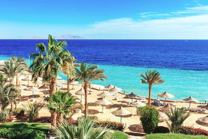 7 nätter i Sharm el Sheikh.