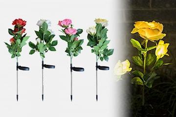 Trädgårdsbelysning rosor på solenergi
