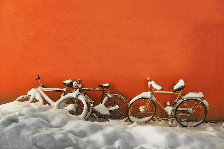 Vinterlagring av sykkel eller el-sykkel med service hos Vintage Vélo