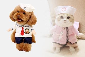 Søte kostymer til kjæledyr