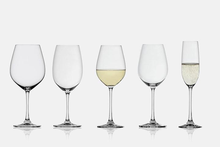 Spiegelau Salute vin- eller champagneglas 4-pack