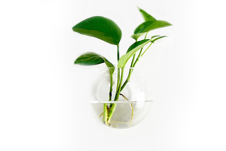 Veggmontert glasskrukke