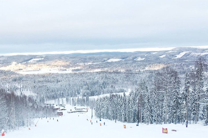 Hassela Ski hotel, 2 nätter under vecka 6