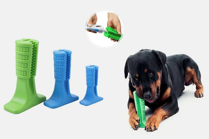 Tuggleksak med tandrengöring för hund