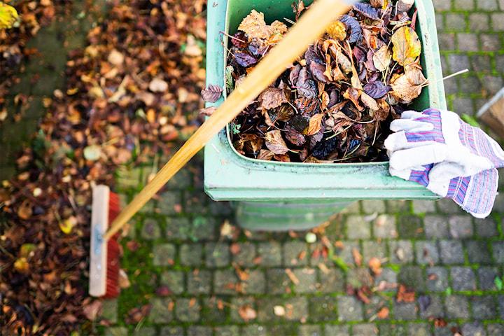 Trädgårdsarbete från Hjälp Idag