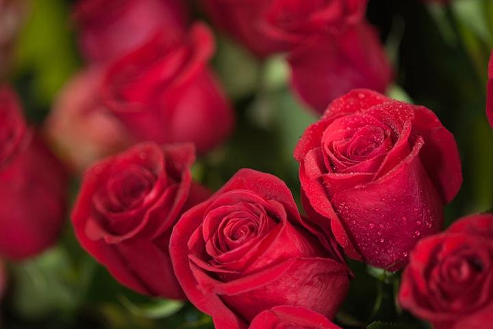 Överraska någon du tycker om med 30 röda rosor