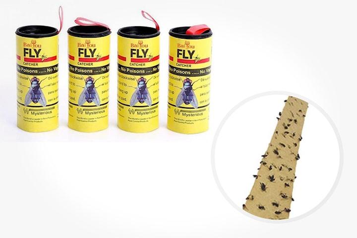 Flugpapper 4-pack