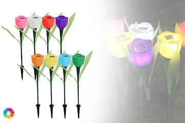 LED tulipaner