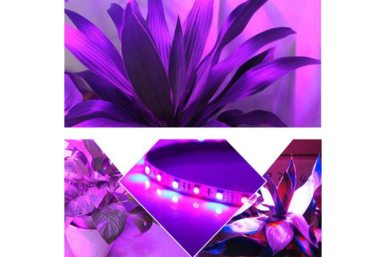 LED-tape vekstlys