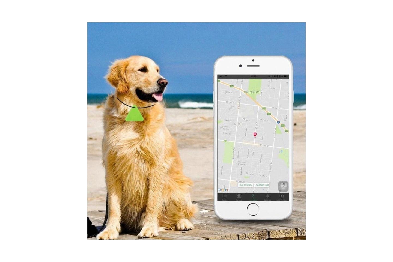 Nyckelhittare - håll reda på hund och nycklar