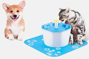 Vattenfontän för hund och katt
