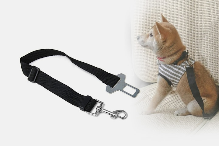 Säkerhetsbälte för husdjur