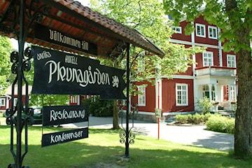 Sommerpakke hos Plevnagården