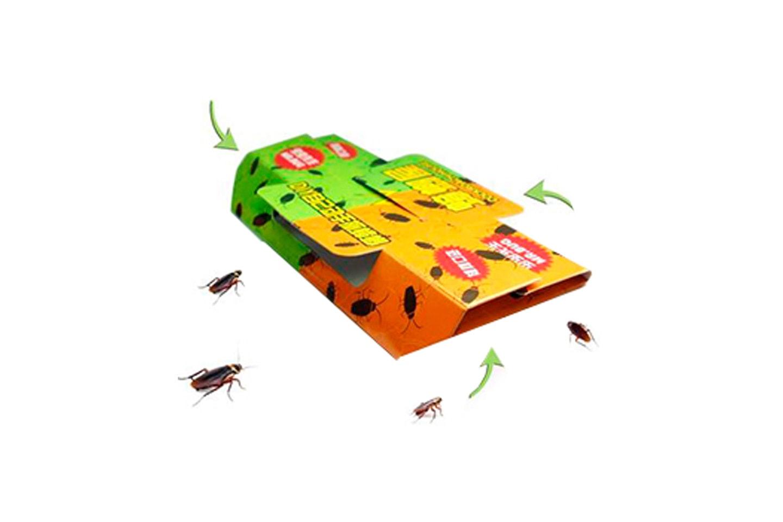 Insektsfelle