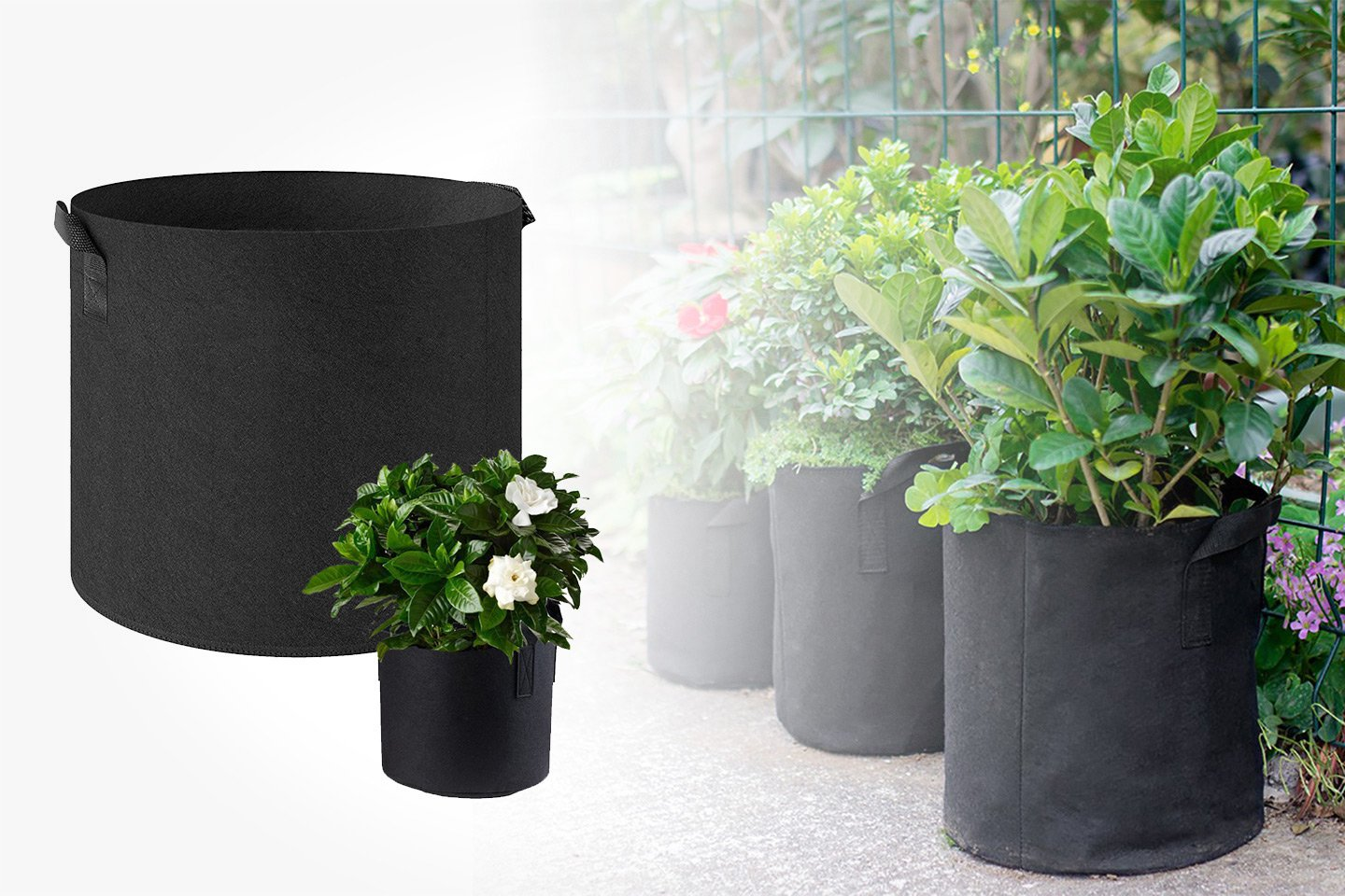 Voksekurv for planter (1 av 8)