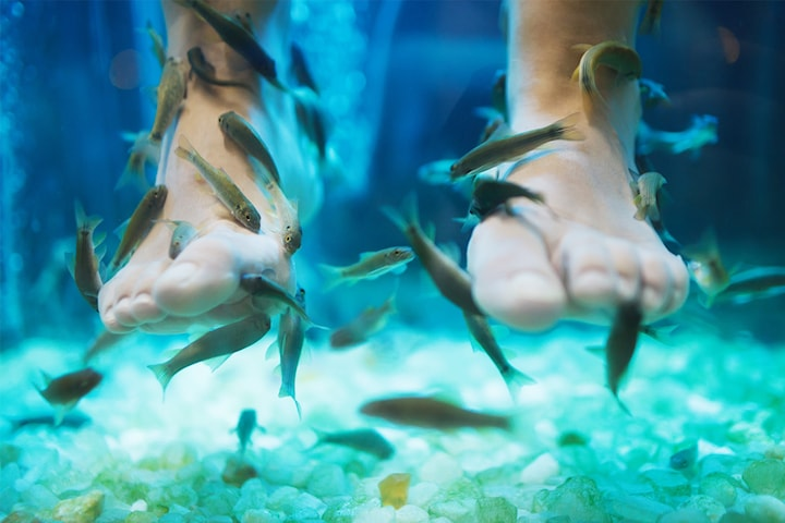 Fiskspa och fotmassage