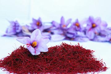 Saffran av högsta kvalitet från Pardis Saffron