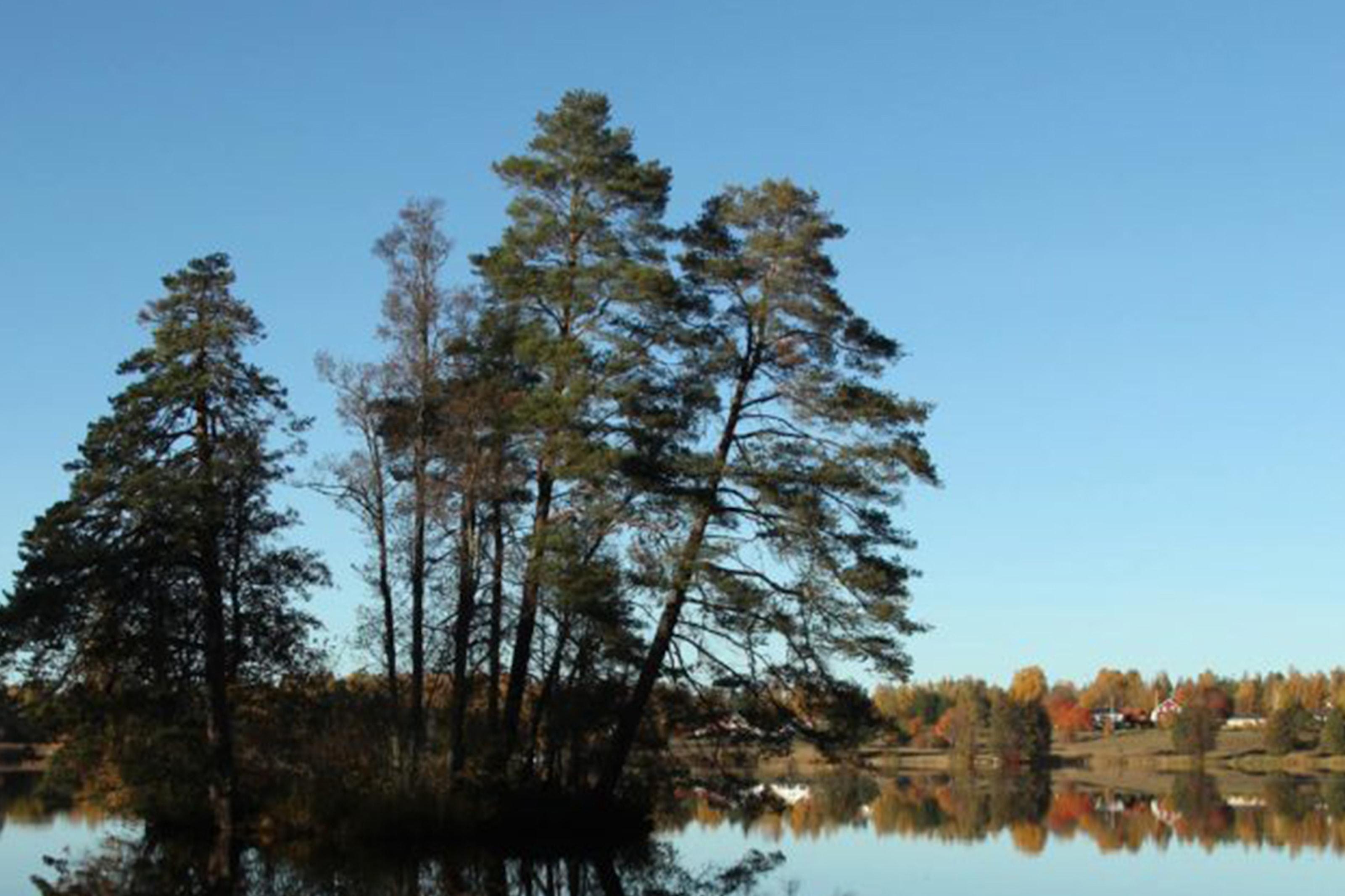 Dufweholms Herrgård för 2