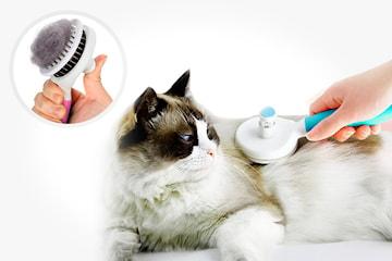 Hund- og kattebørste