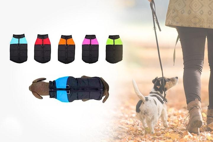 Vanntett og varm hundejakke
