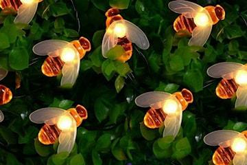 Ljusslinga med bin