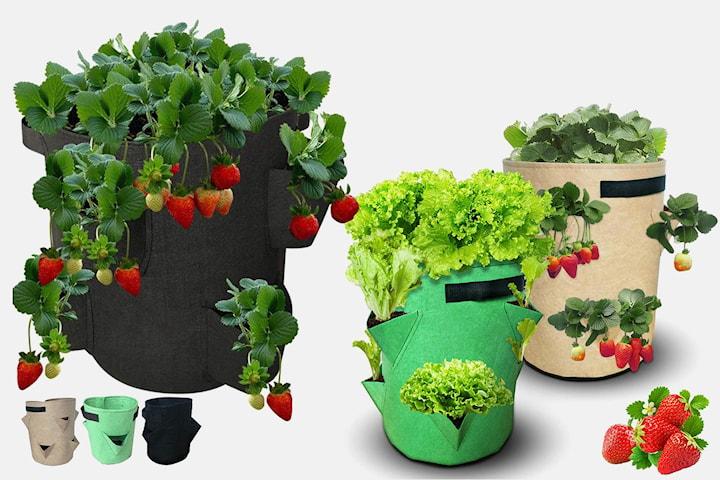 Vokse-bag for frukt og grønnsaker