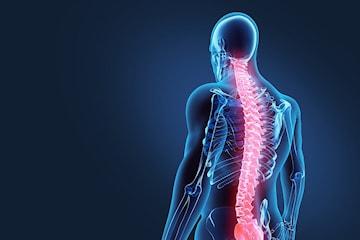 Kiropraktisk undersökning och behandling