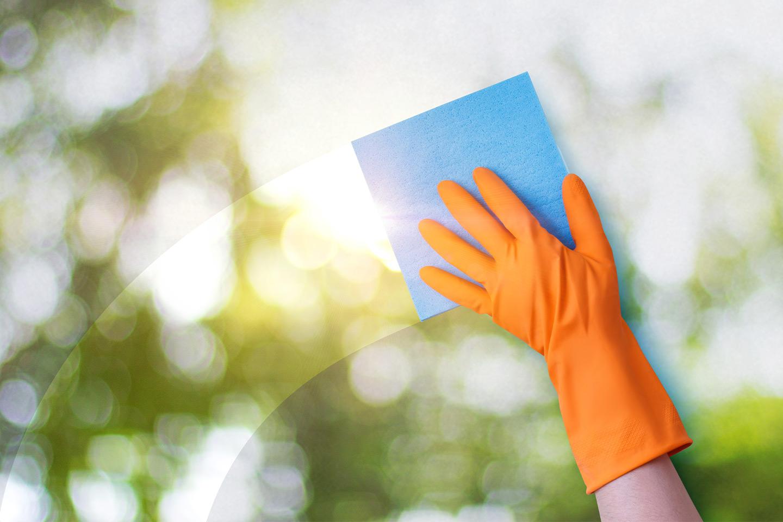 Fönsterputsning (1 av 1)