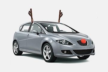 Rudolfkostym till bilen