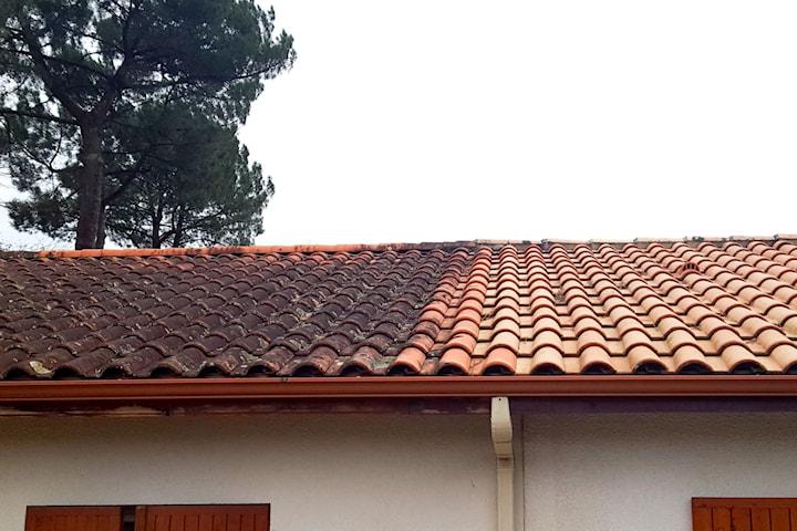Grönfribehandling av tak/fasad