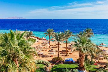 Sharm el-Sheikh: 7 dager på Hilton Sharks Bay Resort med All Inclusive