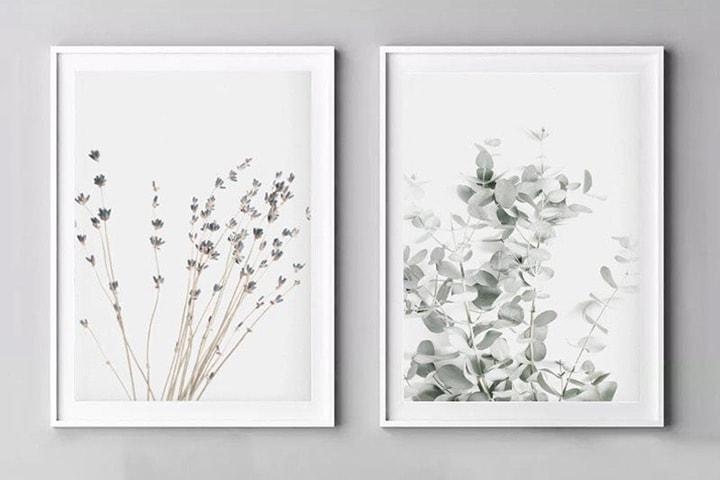 Poster med plantemotiver 2- eller 4-pack