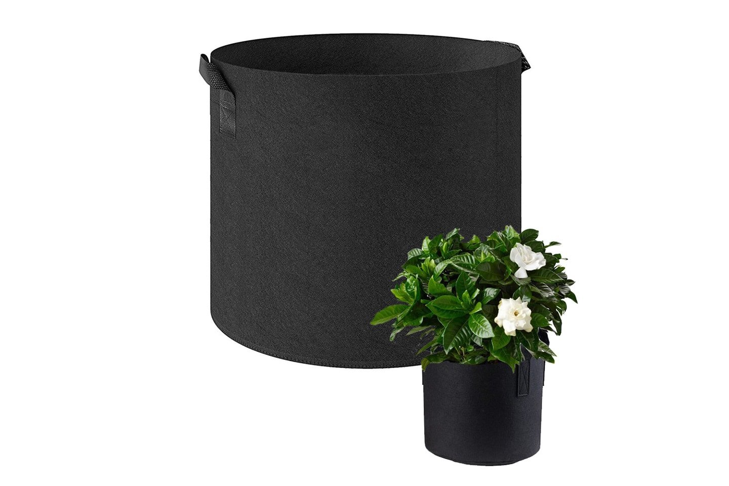 Voksekurv for planter