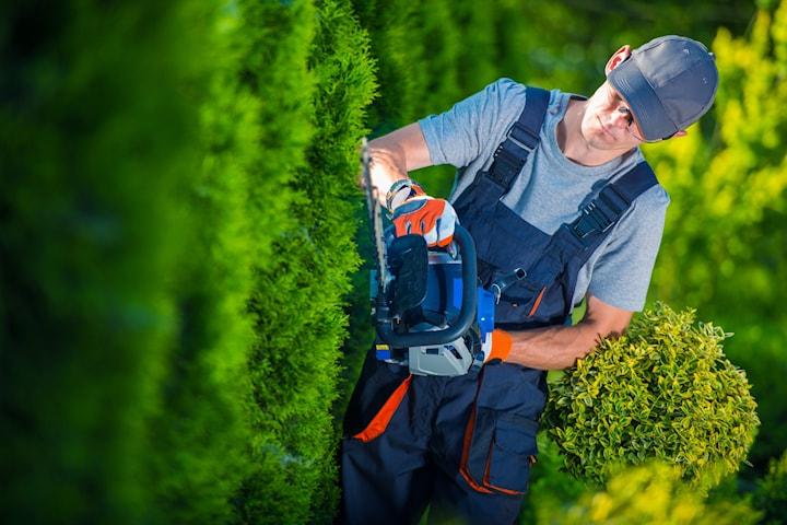Trädgårdsarbete från Relax Städ
