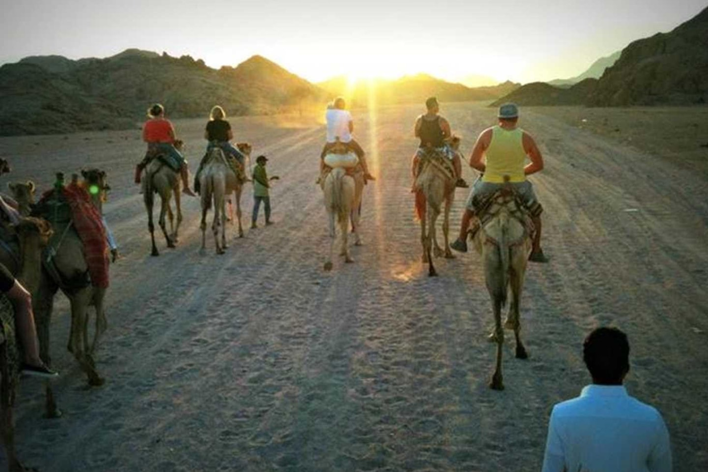 All inclusive i Sharm El Sheik inkl. direktflyg